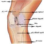 آسیب رباط میانی زانو