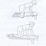 ورزش درمانی DBC برای تقویت عضلات زانو