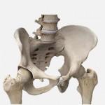 تشخیص و انواع شکستگی لگن