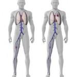 پیشگیری از لخته شدن خون بعد از جراحی تعویض مفصل ران