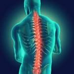 درمان و پیشگیری از درد ستون فقرات